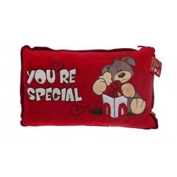 Červený vankúšik you are special