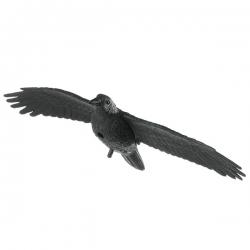 Lietajúci havran odstrašujúci iné vtáky